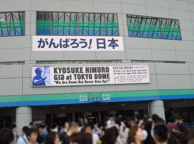 20110611dome